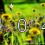 Blumenwiese Fehlerseite 404
